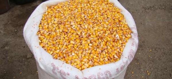 Reguli noi pentru subvențiile acordate fermierilor din Bistrița-Năsăud