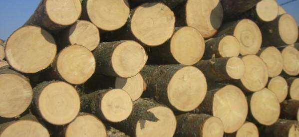 Peste 7.600 de cereri pentru încălzirea locuinței cu lemne au fost depuse în Bistrița-Năsăud