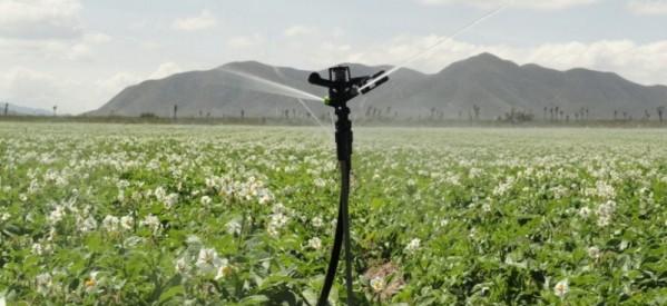 Sitemele de irigații, în atenția ALDE Bistrița-Năsăud