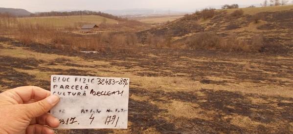 Controale efectuate de APIA Bistrița-Năsăud, cu privire la incendierea unor suprafețe de teren