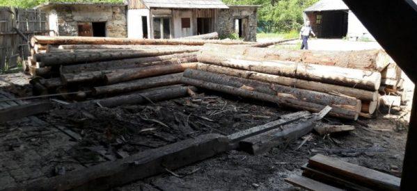 Material lemnos, în valoare de peste 6800 lei, confiscat de polițiștii din Prundu Bîrgăului